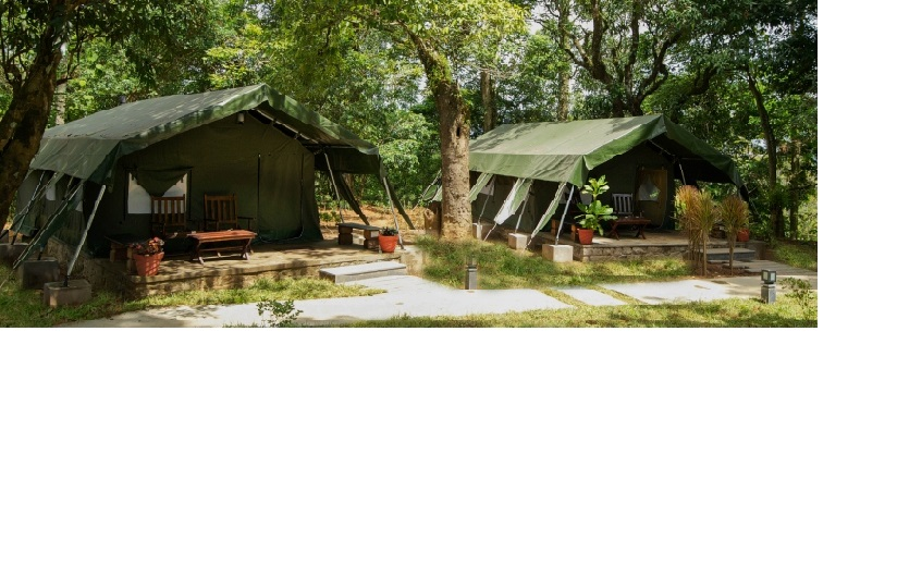 Tents at Monica Garden Bungalow, Valparai- The Terrain surrounding the tents offer excellent possibilities of long and short walks, bicycling and wildlife photography